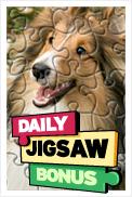 Bonus Jigsaws
